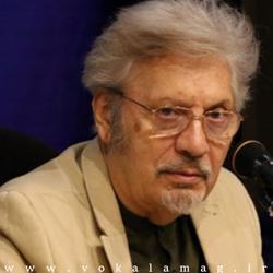 تصویر از دکتر محسن محبی : وکالت «حرفه» است نه «شغل»