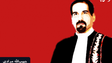 تصویر از انقلاب مقتدر؛ نیازمند کانون وکلای مستقل