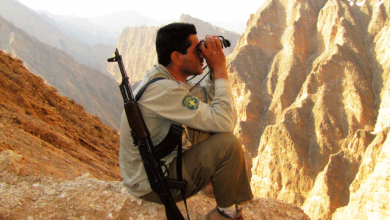 Photo of قانون حمایت قضایی و بیمهای از مأموران یگان حفاظت محیط زیست و جنگلبانی