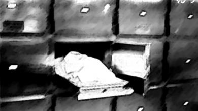 تصویر از جسد غلامرضا منصوری وارد کشور شد