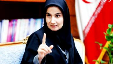 تصویر از تنظیم لایحه « قانون نویسی » در معاونت حقوقی ریاست جمهوری