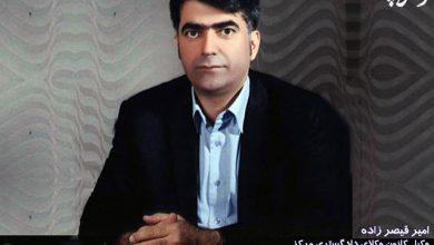 تصویر از امیر قیصرزاده مدیر داخلی اسکودا شد